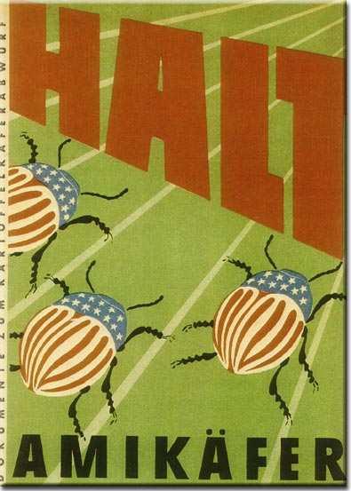 Americans blamed for potato bug invasion